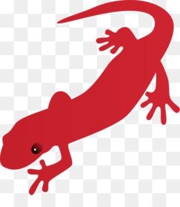 free download fire salamander newt free content clip art free rh kisspng com newt clipart free new clip art programs