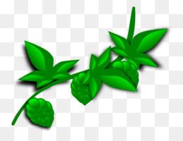 plant tropical rainforest clip art hopps cliparts png download rh kisspng com  tropical rainforest animals clipart