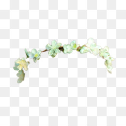 Transparent Tumblr PNG And PSD Free Download