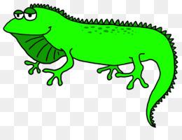 free download lizard green iguana clip art iguana cliparts png rh kisspng com iguana clipart images iguana clipart images