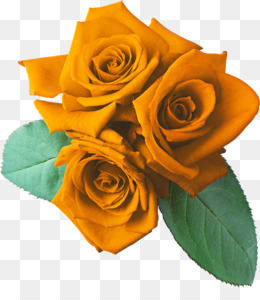 Free Download Rose Clip Art Yellow Rose Png