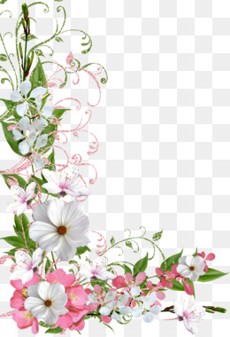 Border Flowers, Flower, Spring, Plant, Flora PNG image with transparent background