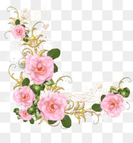 Rose, Pink, Flower, Plant PNG image with transparent background