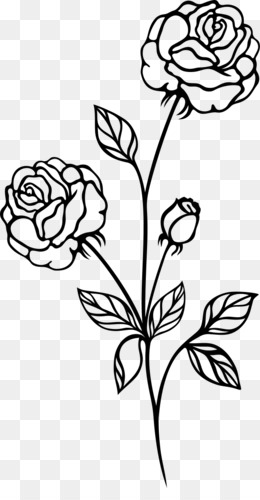 rose black and white clip art white rose png download 4000 2678 rh kisspng com red rose black and white clipart rose black and white clipart
