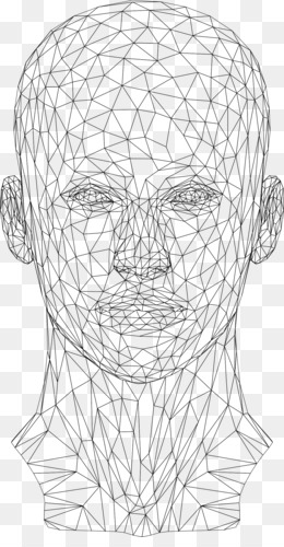 Free download Website wireframe Wire-frame model Human head - wires png.