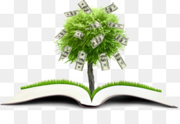 Financial Literacy, Finance, Financial Plan, Tree, Plant PNG image with transparent background