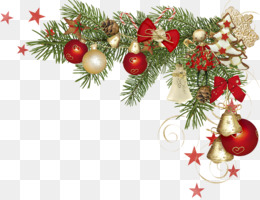 Picture Frames, Natal, Christmas, Fir, Pine Family PNG image with transparent background