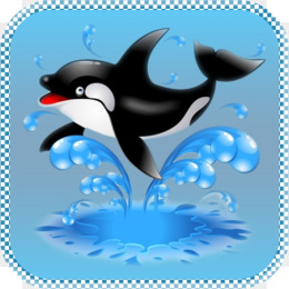 Killer Whale Png And Psd Free Download Computer Icons Font