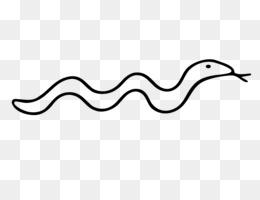 snake drawing snake drawing transparent clipart free download Florida Snake Hunt Python