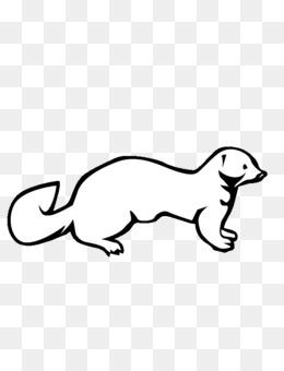 weasels mink ferret clip art ferret png download 612 792 free rh kisspng com ferret clipart cartoon ferret clipart
