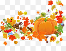 Thanksgiving, Harvest Festival, Thanksgiving Dinner, Winter Squash, Flower PNG image with transparent background
