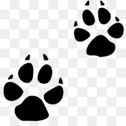 bear animal track squirrel footprint clip art bobcat track rh kisspng com
