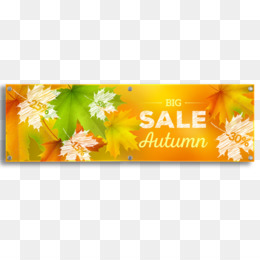Flower PNG image with transparent background