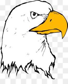bald eagle beak clip art eagle clipart png download 2040 2366 rh kisspng com  cartoon eagle clipart black and white