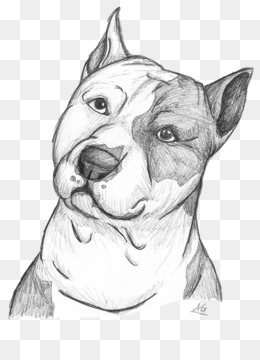 Dog Breed, Pit Bull, American Pit Bull Terrier, Art, Monochrome Photography PNG image with transparent background