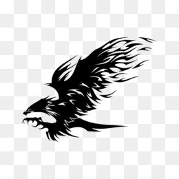 Eagle, Tribe, Tattoo, Carnivoran PNG image with transparent background
