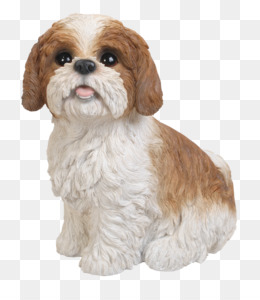 9bcf6157ab2 Cavalier King Charles Spaniel American Cocker Spaniel English Cocker Spaniel  Italian Greyhound - puppy. 1170 780. 23. 2. PNG