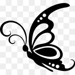 Butterfly, Silhouette, Drawing, Line Art PNG image with transparent background