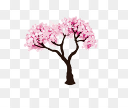 Blossom, Cherry Blossom, Drawing, Pink, Plant PNG image with transparent background