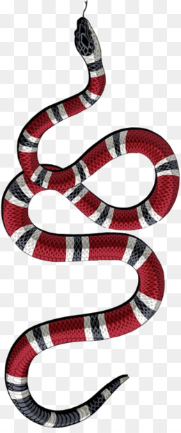 Gucci Snake Png And Psd Free Download Tiger Snake Lion
