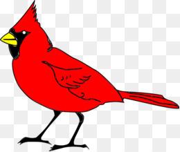 free download northern cardinal st louis cardinals clip art rh kisspng com st louis cardinal baseball clipart St. Louis Cardinals Logo