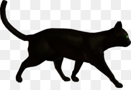 2258d5ffae3f Puma PNG   Puma Transparent Clipart Free Download - Cat Warriors ...