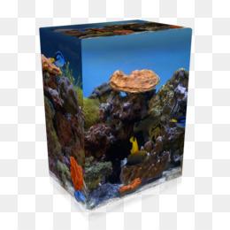 Aquarium desktop wallpaper high-definition television screensaver.