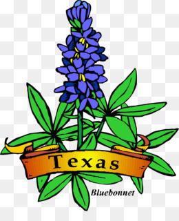 bluebonnet png bluebonnet transparent clipart free download rh kisspng com Texas Bluebonnet Clip Art Black and White Texas Bluebonnet Clip Art Black and White