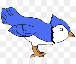 flying bird png and psd free download blue jay clip art rh kisspng com blue jay feather clip art blue jay bird clipart