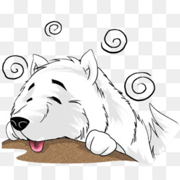 Whiskers, Dog, Cat, White, Facial Expression PNG image with transparent background