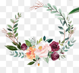 Bible, Label, Religious Text, Flower, Flowering Plant PNG image with transparent background