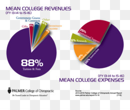 revenue chart expense college report expenses