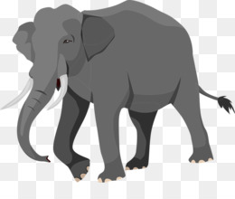 Free Download Indian Elephant African Elephant Elephantidae