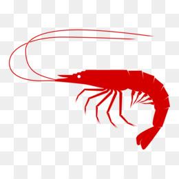 shrimp clip art shrimp png download 1000 537 free transparent rh kisspng com
