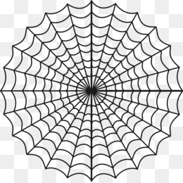Spider PNG Transparent Clipart Free Download