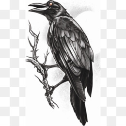 Tattoo, Gothic Fashion, Sleeve Tattoo, Bird, Fauna PNG image with transparent background