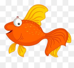 Ikan Mas Kartun Kartun Ikan Unduh Orange Biologi Kelautan Ikan
