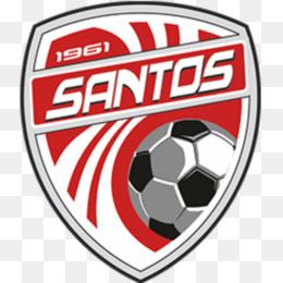 Free download Santos de Guápiles F C  Dream League Soccer Deportivo