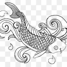 Coloring Book Adult Fish Child Koi
