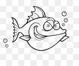 Pesci Pagliaccio Png Trasparente E Pesci Pagliaccio Disegno Pesce