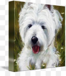 Free download West Highland White Terrier Glen Cairn Terrier