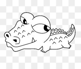 Scaricare Gratuito Un Coccodrillo D Acqua Salata Alligatori Disegno