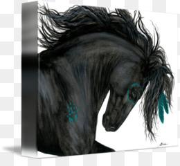 Frisone Cavallo Png Trasparente E Frisone Cavallo Disegno American