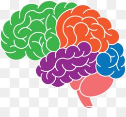 cerveau superstar