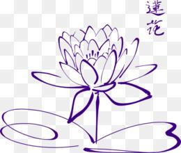 Free Download Drawing Sacred Lotus Line Art Image Clip Art Purple