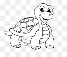 Teenage Mutant Ninja Turtles Drawing Turtle Clipart Png Download