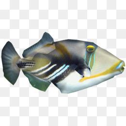 Ikan Sirip Download Gratis Png Dan Psd Spinner Dolphin Umum Lumba