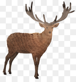 Tote Bag, Deer, Bag, Mammal PNG image with transparent background