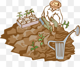 Soil, Humus, Microbiology, Organism, Tree PNG image with transparent background