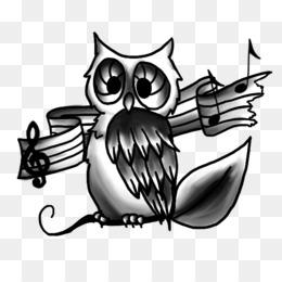 Transparent Owl Owl Cartoon Transparent Image Png Download 833